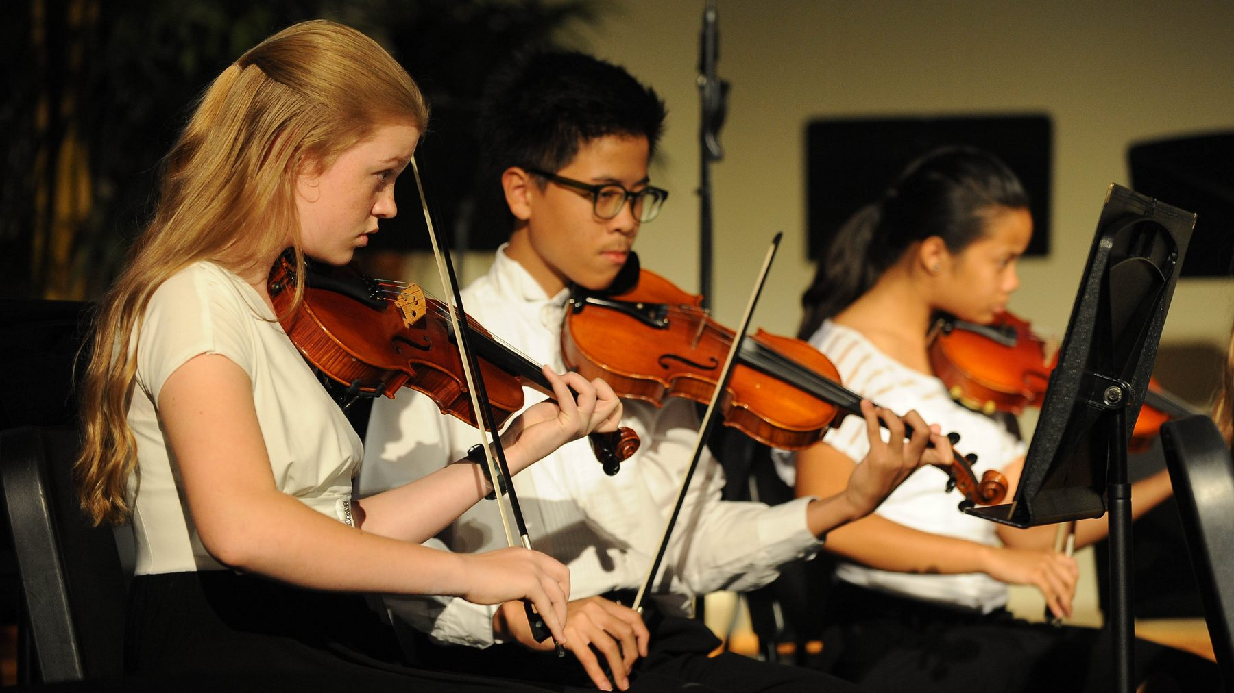 Spring Orchestra Concert 2015